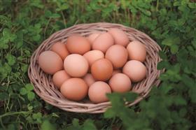 緒方さん オメガ3卵